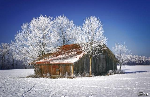ảnh ngôi nhà gỗ giữa mùa đông