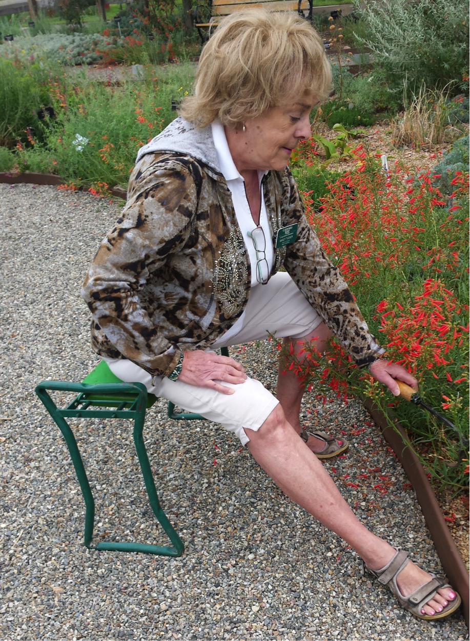 Jeffco gardener tips for senior gardening 1 maturing for Gardening tips colorado
