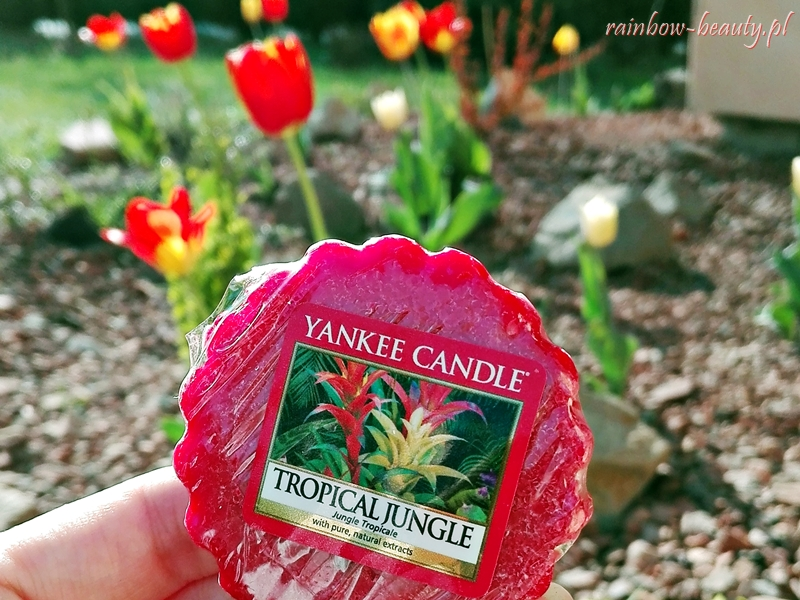 Tropical Jungle - Yankee Candle
