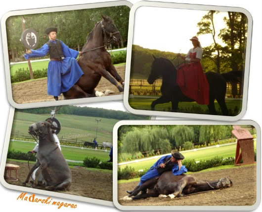 Goulash, horses and violins in Pesta, Buda and Óbuda by Laka kuharica: horses, food and violins