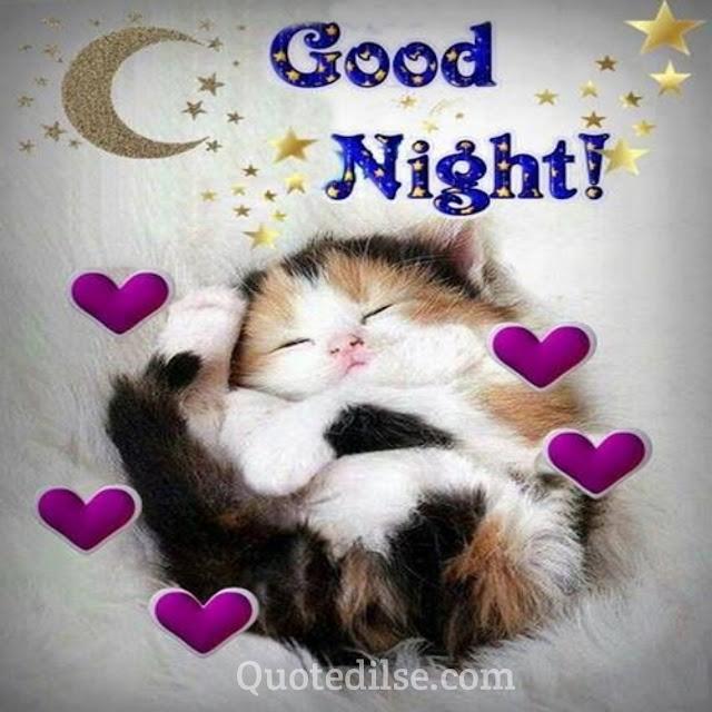best good night shayari for sister in hindi