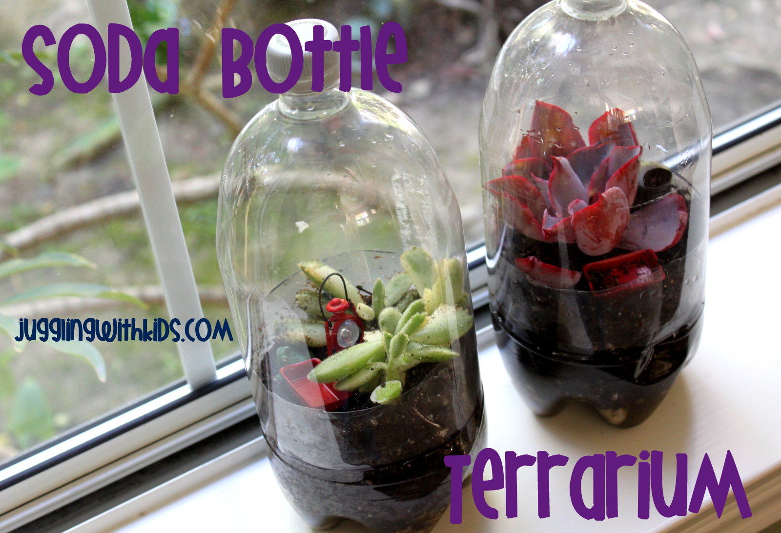 Soda Bottle Terrarium Juggling With Kids