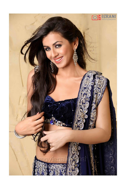 Nikki Galrani actress hot photos