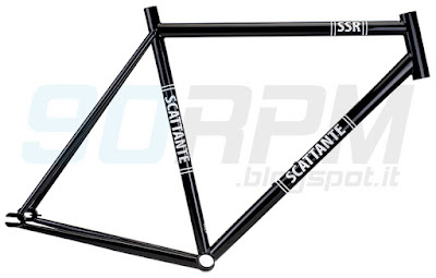 """Foto che ritrae una bicicletta con telaio """"a doppio triangolo"""""""