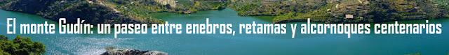 http://www.naturalezasobreruedas.com/2016/04/el-monte-gudin.html