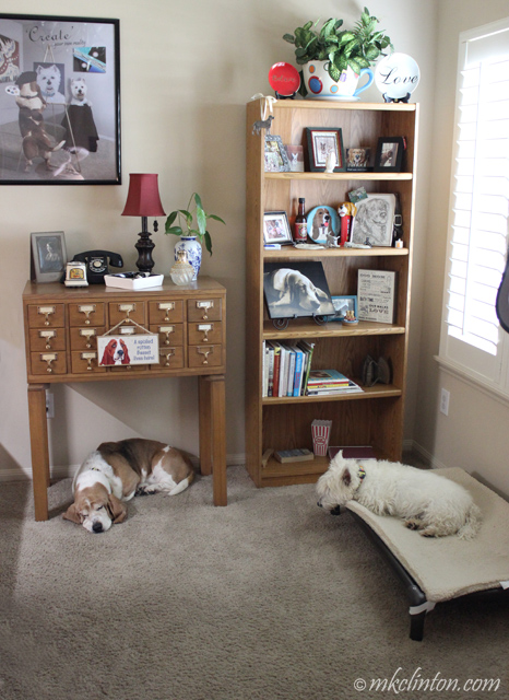 Two dogs laying in a room