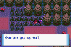 pokemon shattered dreams screenshot 3