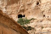 Израиль, путешествия, руководство, картинки, Негев