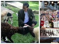 Ini Baru Makar, Polisi Kemana? Petinggi Republik Papua Barat Surati Jokowi, Isinya Asli Makar