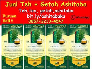 0857-3213-4547 Vigafita-G Ashitaba Drink