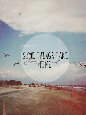 "Frase ""Some things take time"" sobre una imagen con playa y gaviotas"