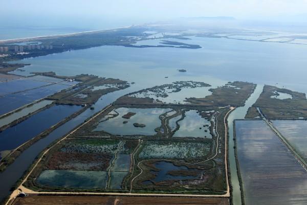 La Albufera de Valencia sigue sin recuperarse casi tres décadas después de  ser declarada humedal Ramsar  e1f32267820