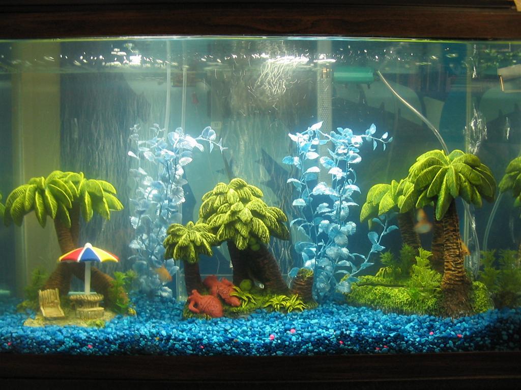 Shark Bedroom Decor Nature Lover Silver Shark