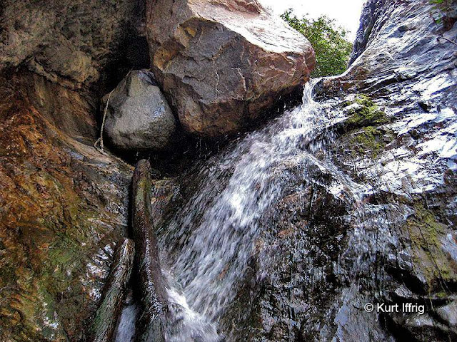 In order to get above these falls you'll need to climb up the logs and pass through a narrow gap between boulders.