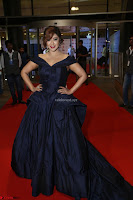 Payal Ghosh aka Harika in Dark Blue Deep Neck Sleeveless Gown at 64th Jio Filmfare Awards South 2017 ~  Exclusive 114.JPG