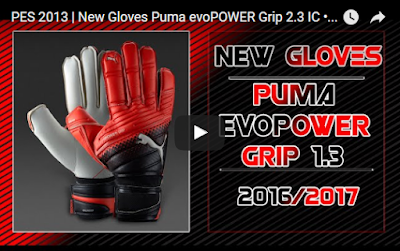 PES 2013 Gloves Puma evoPOWER Grip 2.3 IC 2016-2017