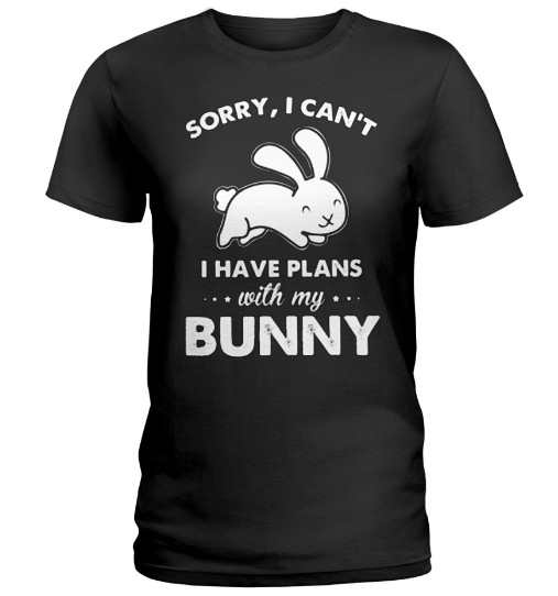 Sorry I Can't I Have Plans With My Bunny, Sorry I Can't I Have Plans With My Bunny Hoodie, sorry i can't i have plans with my rabbit