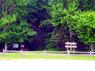 Brum Woods - Batesville, Indiana