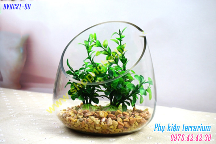 Binh vat nhon co so 1 BVNCS1060
