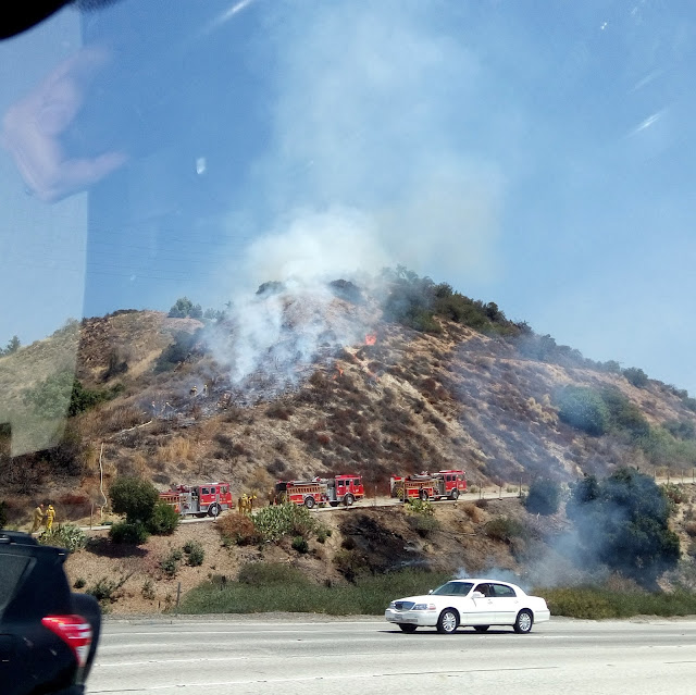 Brush fire on the side of the freeway