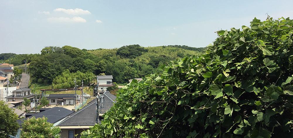 丸根砦中腹から名古屋市郊外を望む(2017年6月10日撮影)