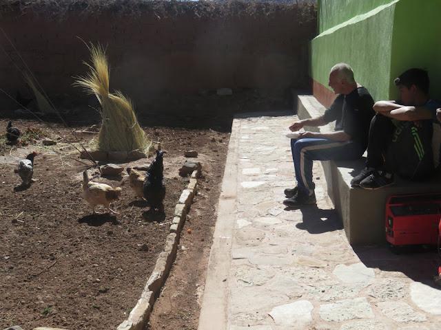 widmet sich der Padre den Hühnern