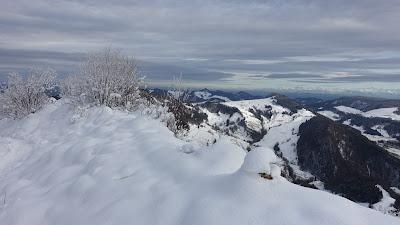 Vogelberg auf 1204 m