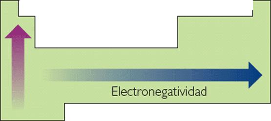 Qumica 5opiedades peridicas y su variacin en la tabla siguiente regla bsica cuanto ms a la derecha y arriba de la tabla peridica se encuentre el elemento ms electronegativo ser energa de ionizacin urtaz Images