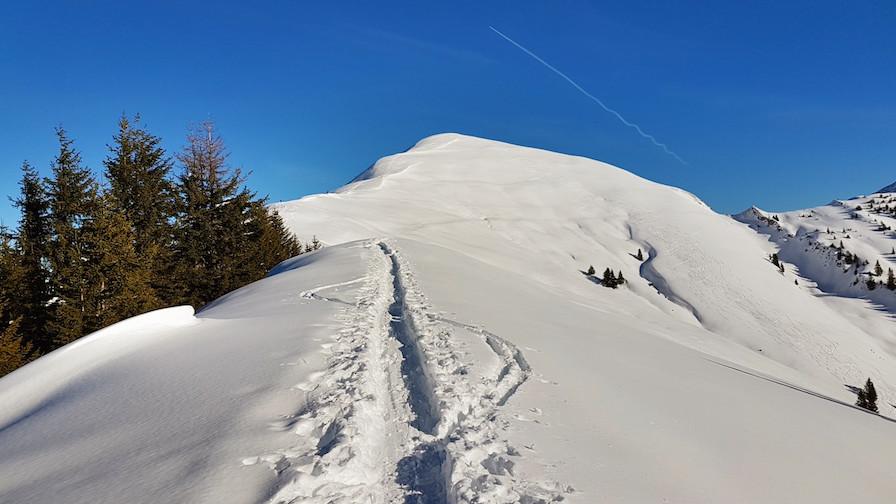 Skitour Schönalmjoch
