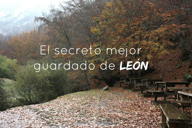 http://www.mediasytintas.com/2016/12/el-secreto-mejor-guardado-de-leon.html