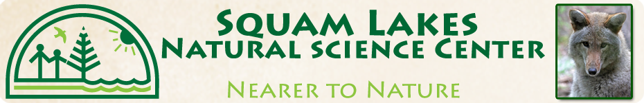 Squam Lakes Natural Science Center Blog