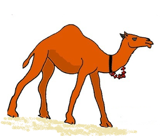 Essay on camel in Hindi