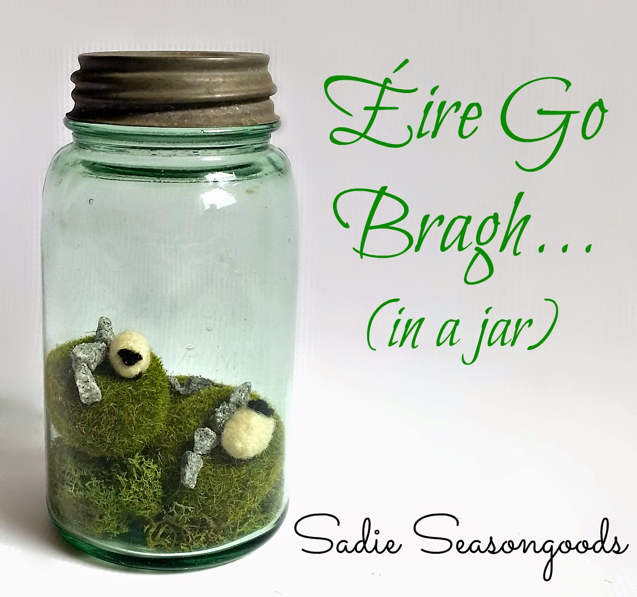 ireland in a jar