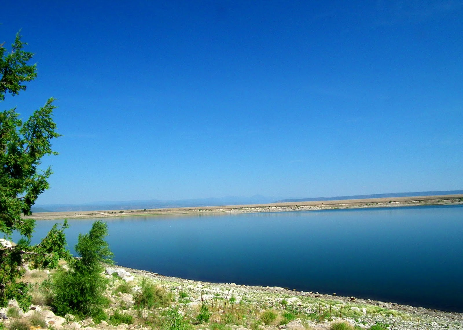 New mexico fishing lakes for Fishing new mexico