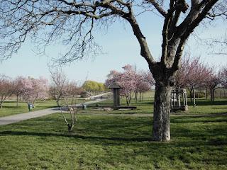 Landschaftspark Wartenberger Feldmark