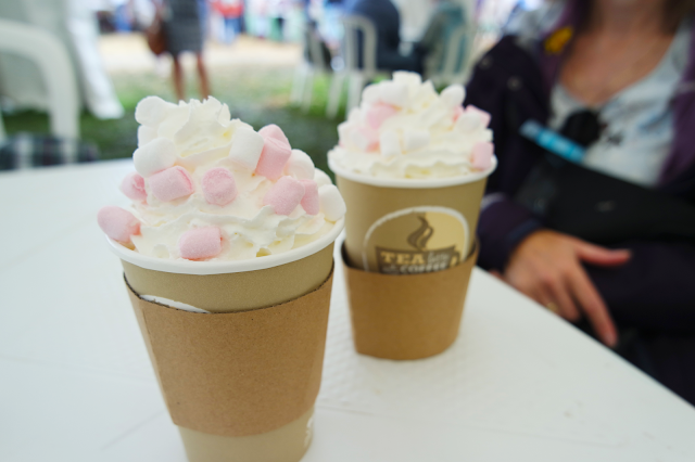 two hot chocolates topped with cream and marshmallows