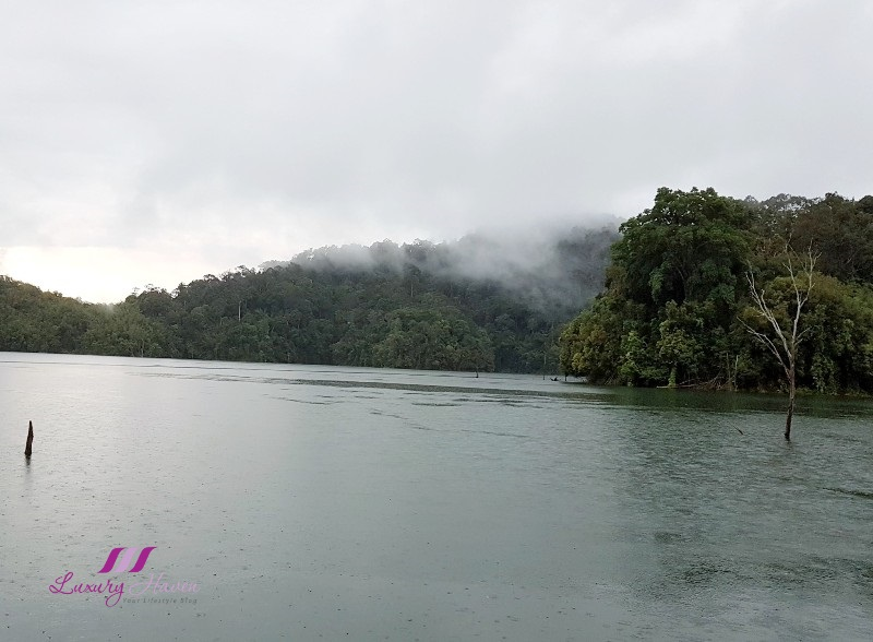 enchanting royal belum rainforest lake temenggor