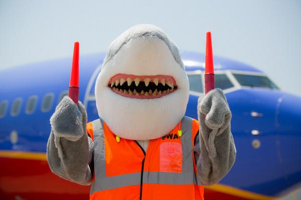 southwest shark week sweepstakes just a car guy it s shark week and southwest airlines did 2619