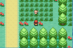 pokemon delta emerald screenshot 1