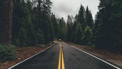 Relajante carretera en medio del bosque con cielo nublado