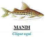 Peixe, Mandi