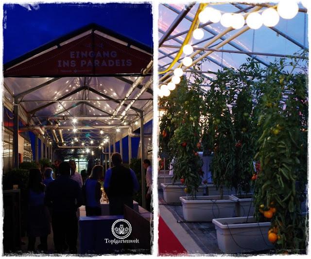 Gartenblog Topfgartenwelt The Grand Paradeis Show: der Eingang zum Paradeis äh Tomatenparadies in der Nähe der Stadt Salzburg