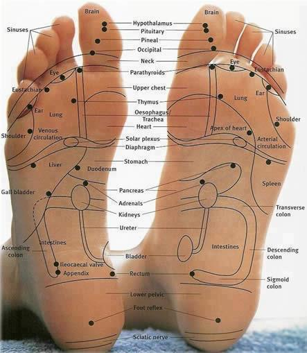 Pressure Points On Feet Map 64