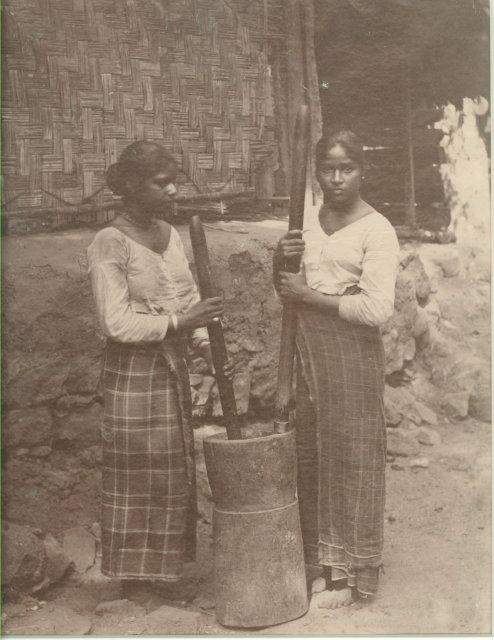 Sinhalese (Sri Lankan) Women pounding paddy - c1880