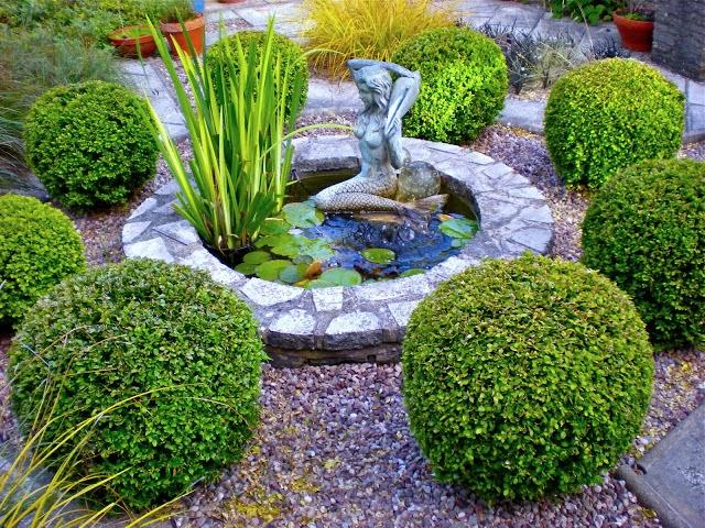 Popolare Il mondo in un giardino: Sempreverdi per siepi IO78