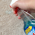 She Grabbed The Windex And Sprayed It On The CARPET!! What Happens When She Presses It With THIS Is AMAZING!