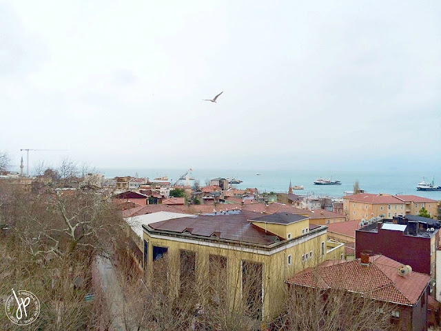 rooftops and sea of marmara