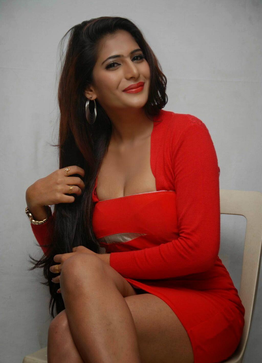 Neha Saxena Hot Photo Gallery In Red Dress At Dandu Film Press Meet  Hq Pics N Galleries-1334
