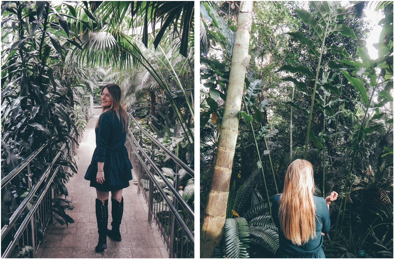 6 nagłówek mia gold zielona sukienka butelkowa zieleń z falbankami czarne muszkieterki za kolano deichmann blond fryzury modne 2018 ombre somblre daniel wellington sesja w palmiarni skórzany pasek palmy łódź