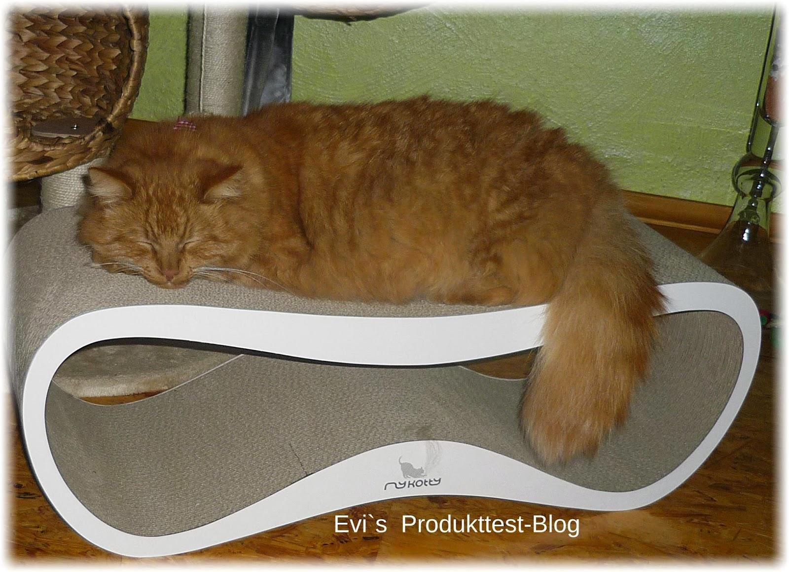 EVI s Produkttestblog MyKotty  ein tolles Mbelstck fr die Katze